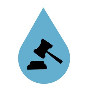 Legal Compliance Icon